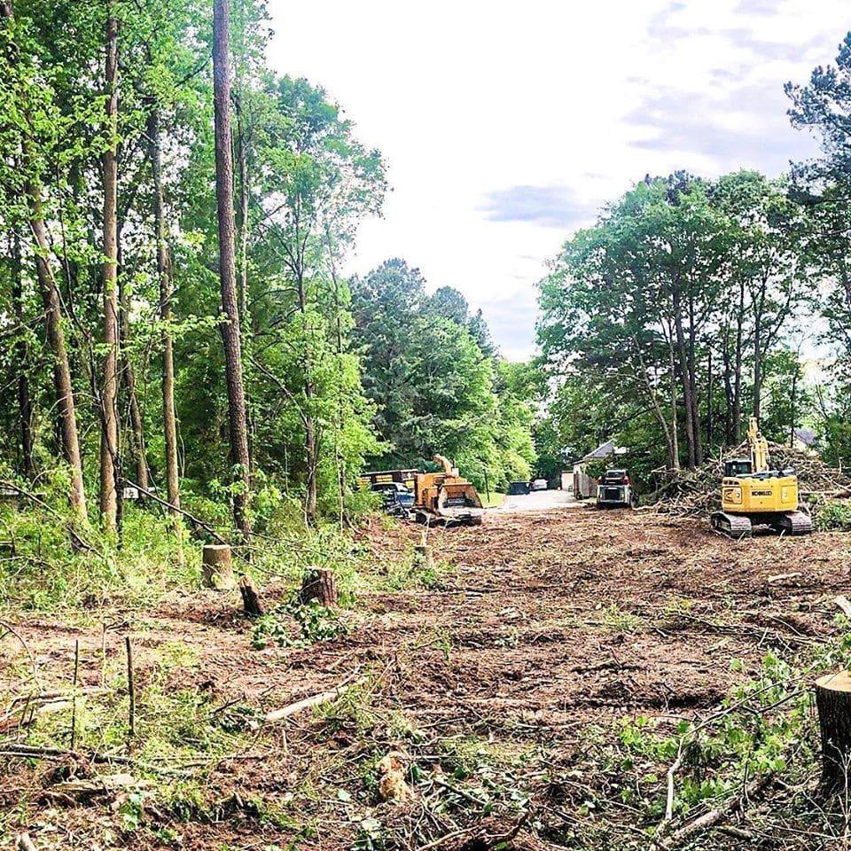 Emergency Tree Service Atlanta GA