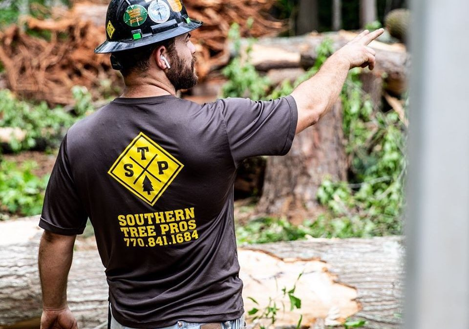 Southern Tree Pros Available 24/7 for Marietta Arbor Needs
