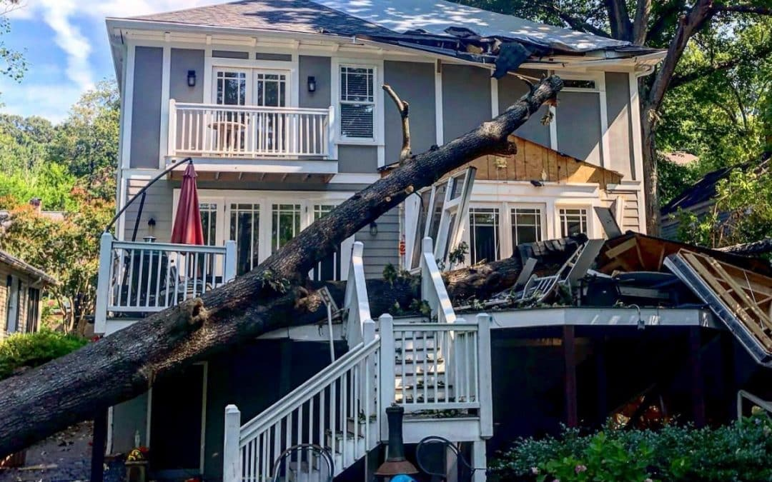 Tree Care Experts Offer Dangerous Tree Removals in Atlanta, GA