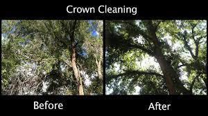 Crown Clean