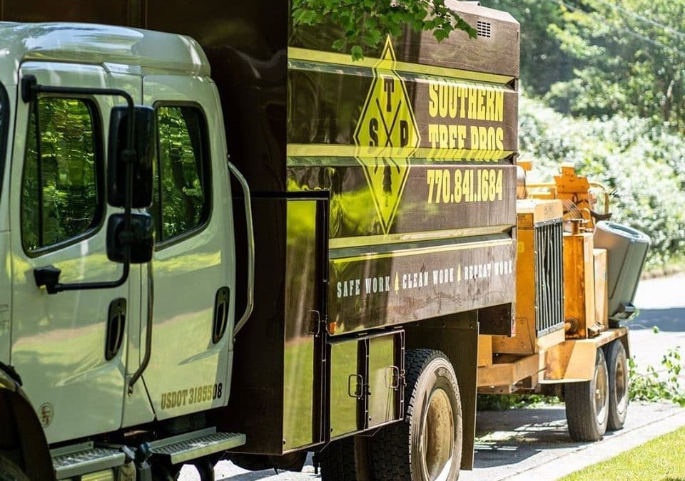 Arborist Shares Tree Removal Safety Tips To Help Residents Of Atlanta GA